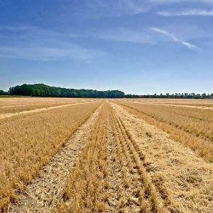 farming machine elements