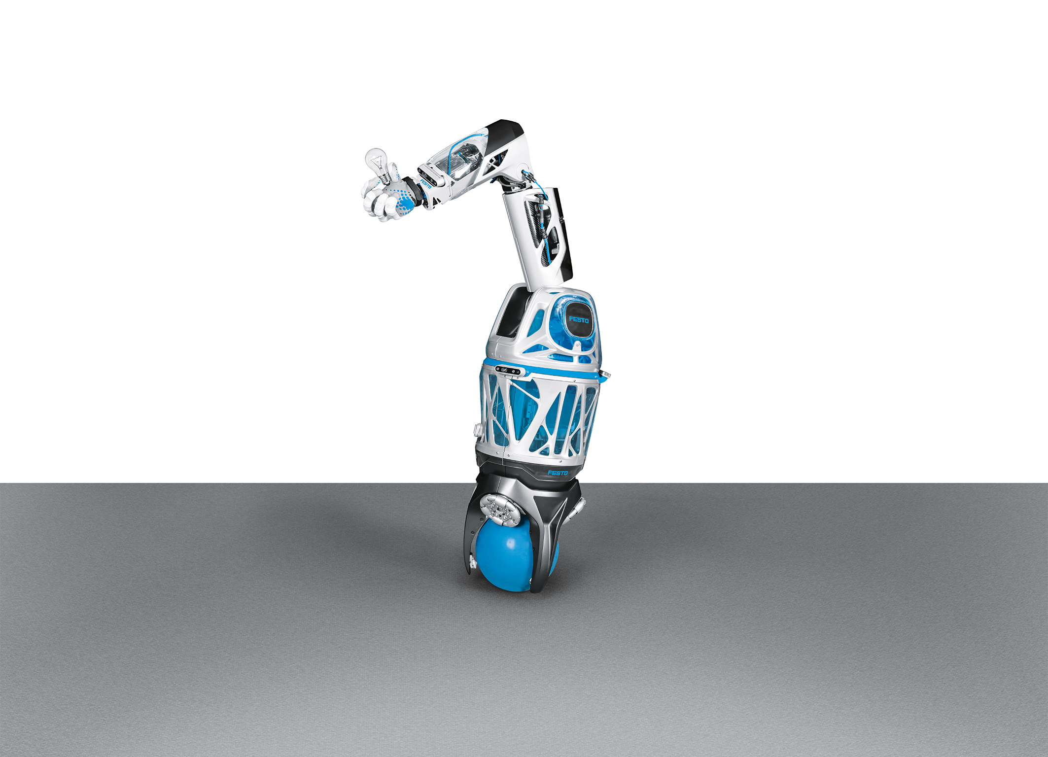 Bionic Mobile Assistant